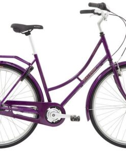 Raleigh Darlington Dame 3g 2020 - Lilla