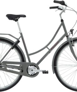 Raleigh Darlington Dame 7g 2021 - Grå