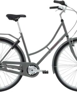 Raleigh Darlington Dame 3g 2020 - Grå